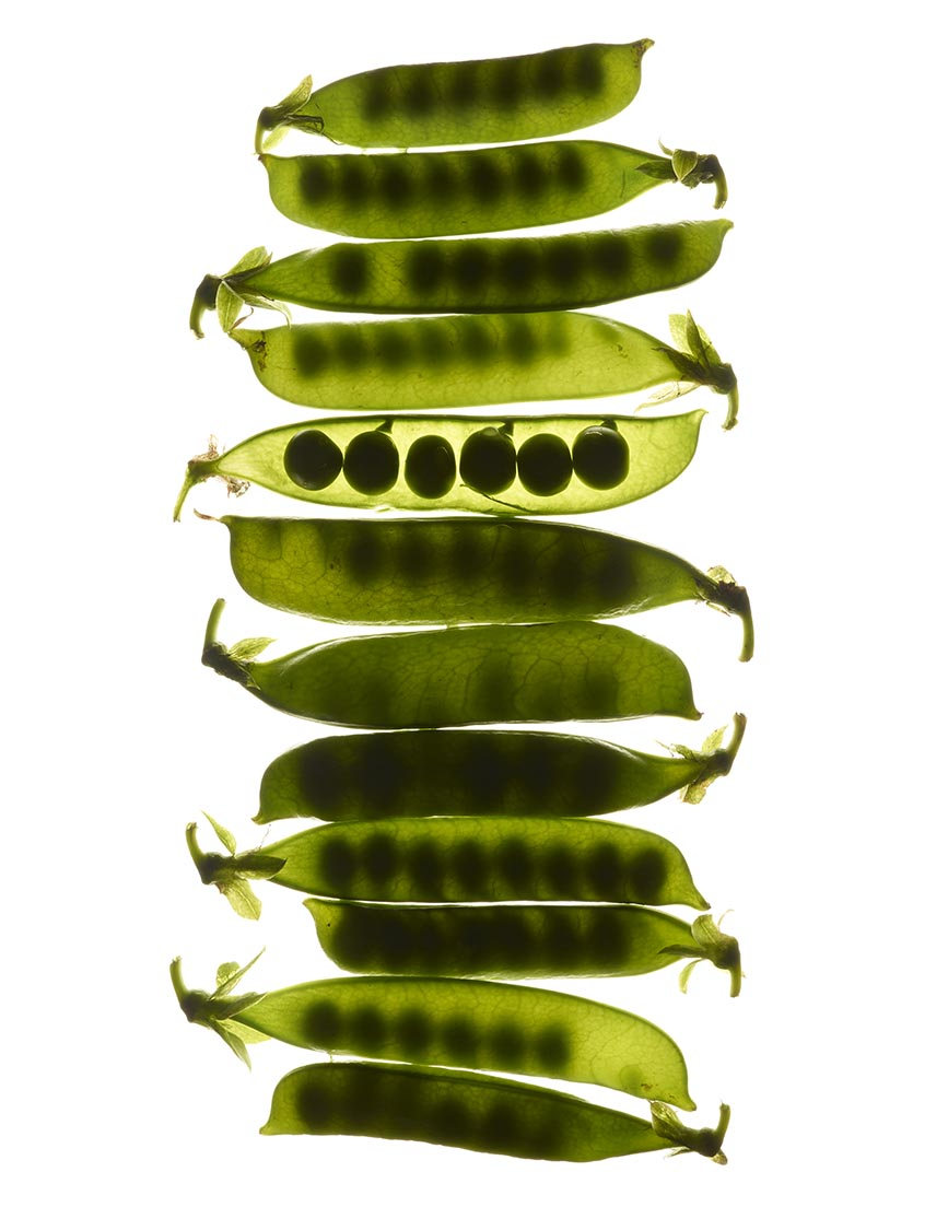 BACKLIT_PEAS
